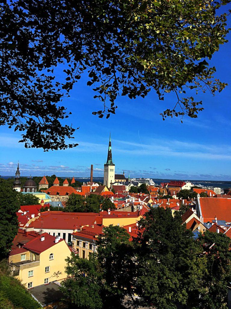 Kreuzfahrt - Tallinn AIDAmar Ostsee - Altstadt Tallinn