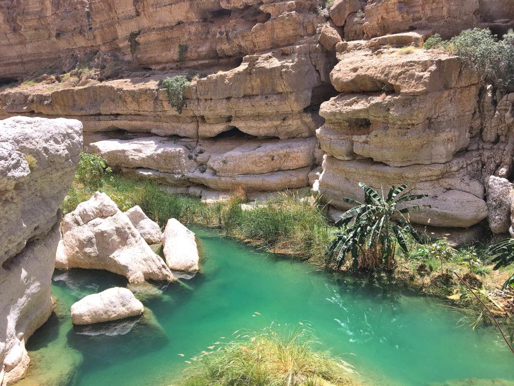 Oman Reiseroute - Wadi Shab - Oase